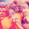 Sweet Creations *-* Cute09