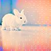 Sweet Creations *-* Cute11