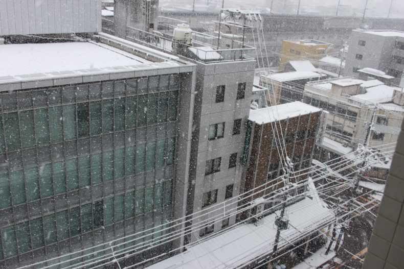 SAKURA 2012 March Japan Trip. - Page 2 IMG_2950-1