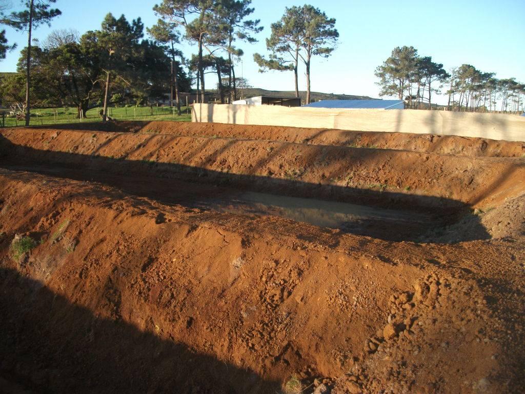 Mud Ponds.  - Page 2 DSCF0886