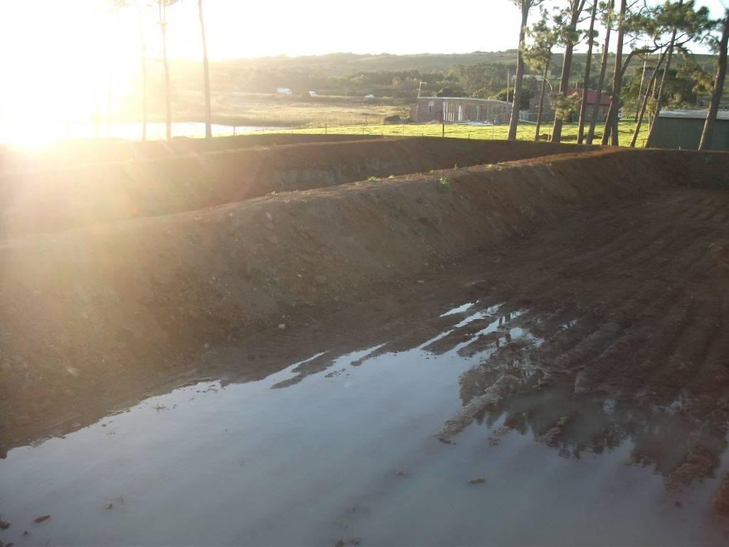 Mud Ponds.  - Page 2 DSCF0887