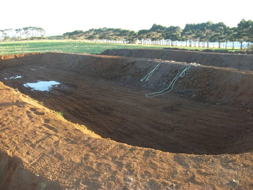 Mud Ponds.  - Page 2 DSCF0891