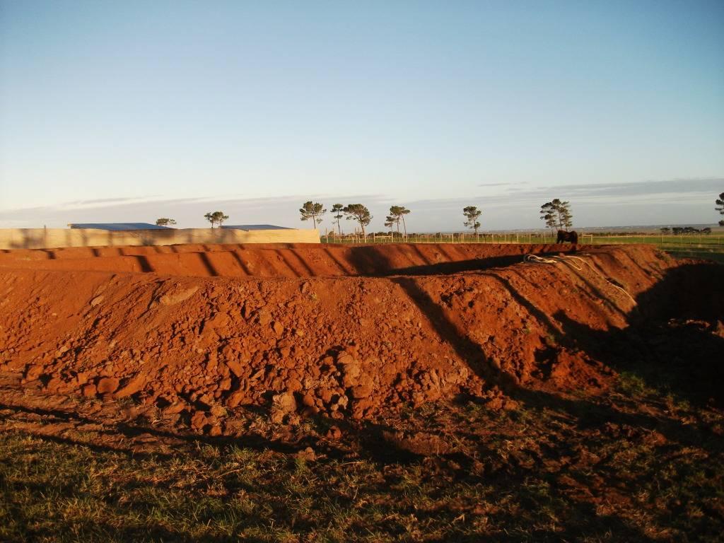 Mud Ponds.  - Page 2 DSCF0893