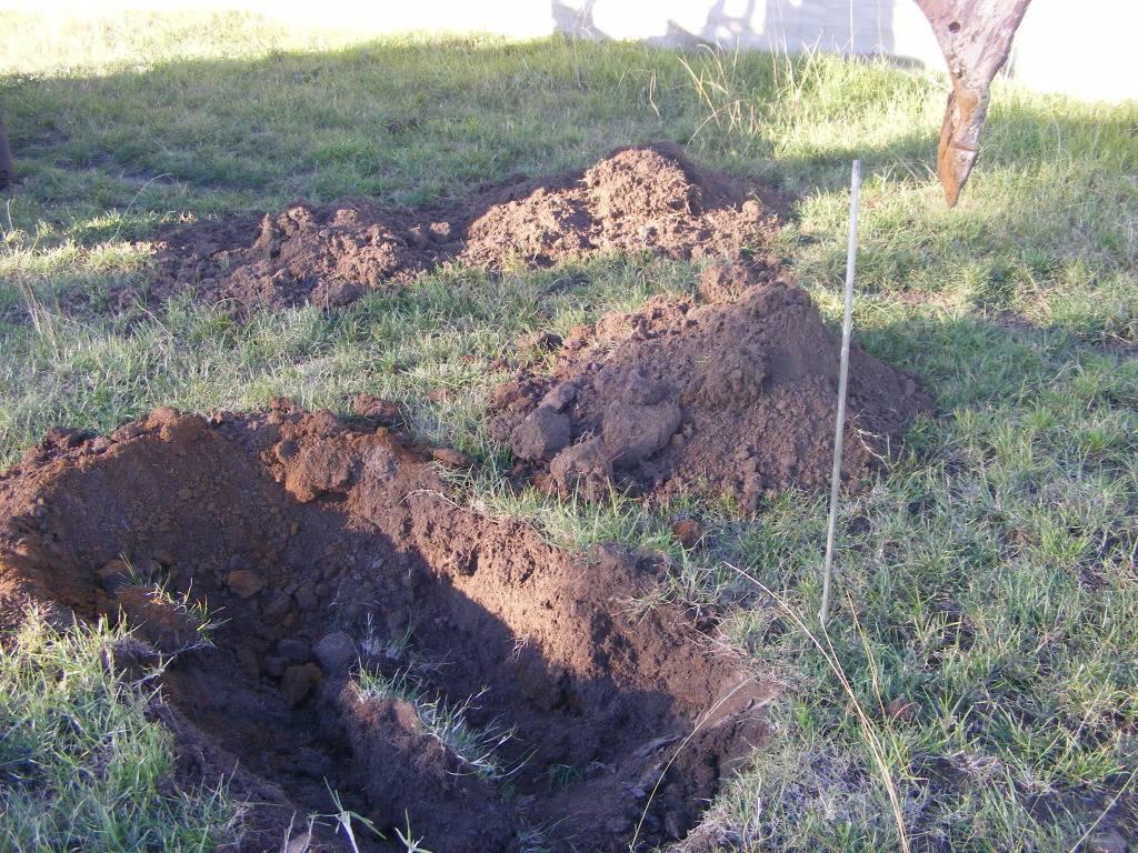Mud Ponds.  DSCF9146