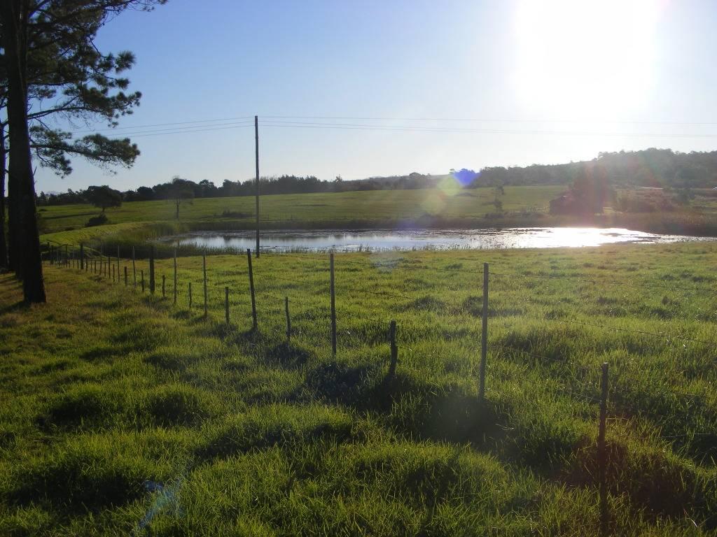 Mud Ponds.  DSCF9158
