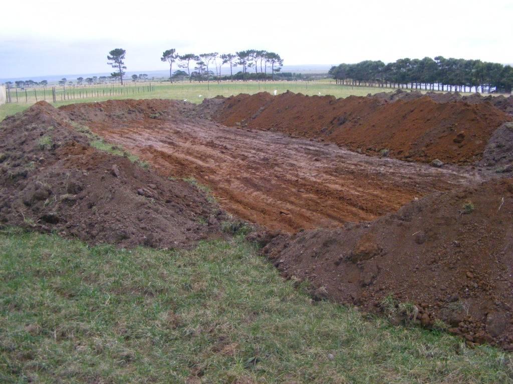 Mud Ponds.  - Page 2 DSCF9163
