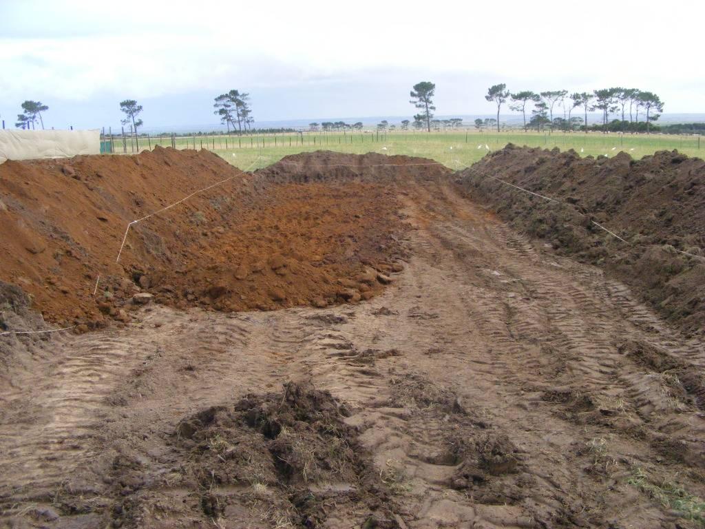 Mud Ponds.  - Page 2 DSCF9165