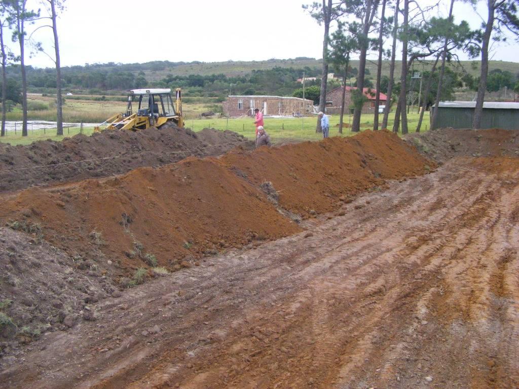 Mud Ponds.  - Page 2 DSCF9169