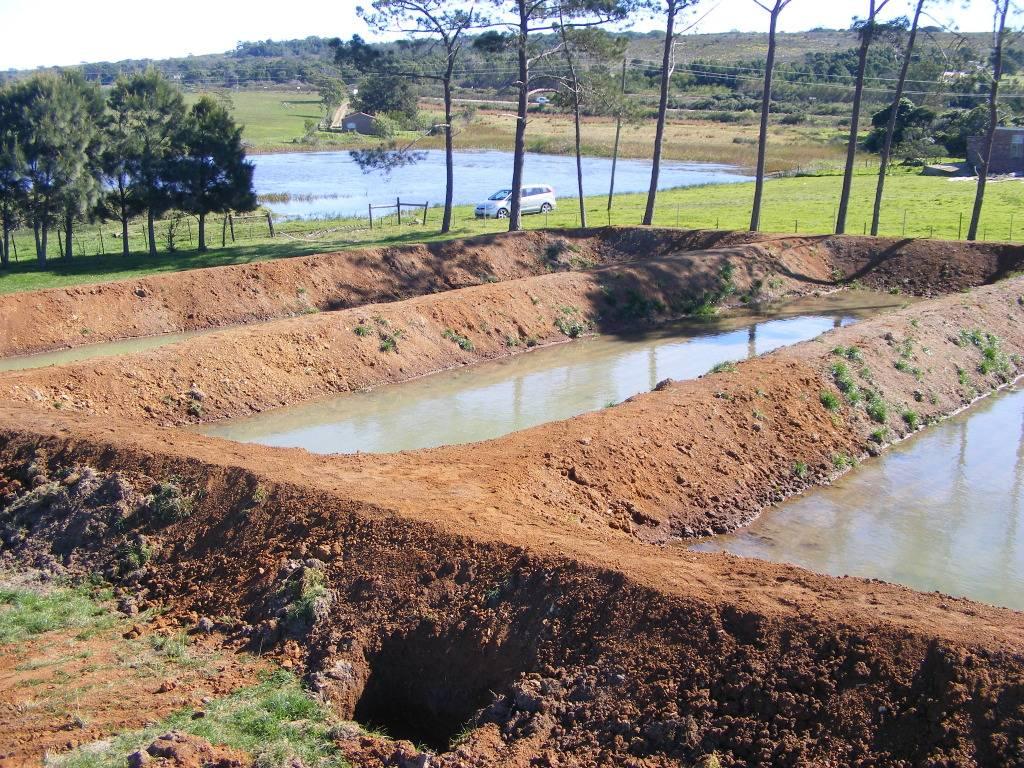 Mud Ponds.  - Page 3 DSCF9426