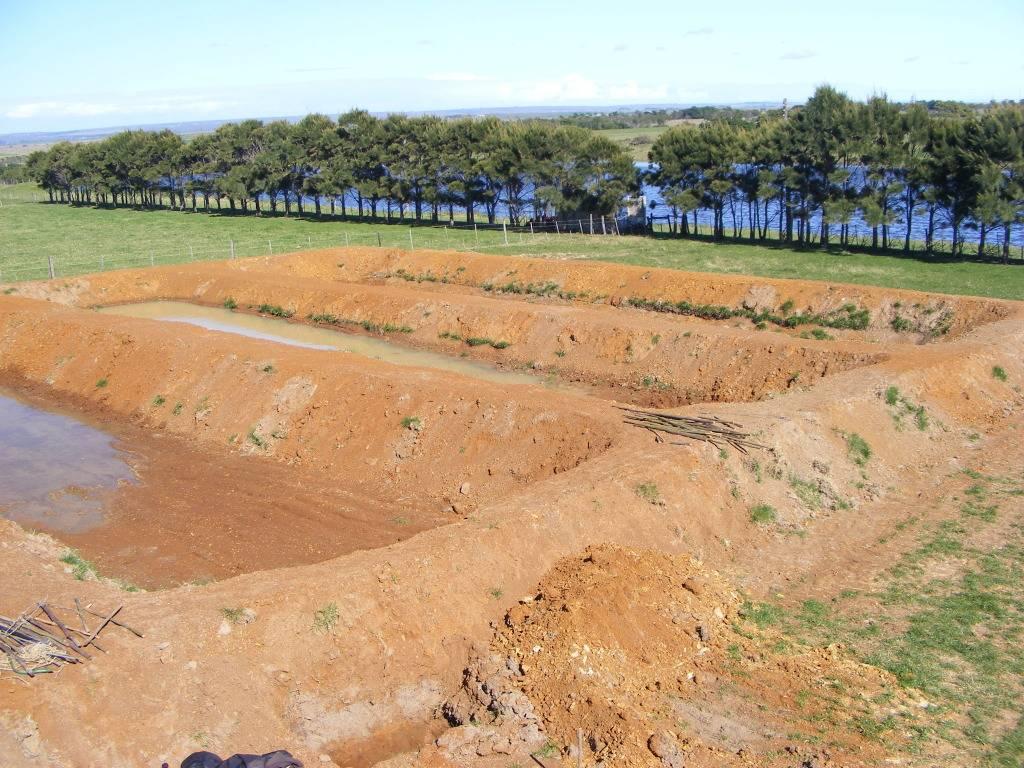 Mud Ponds.  - Page 3 DSCF9429