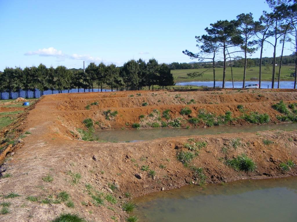 Mud Ponds.  - Page 3 DSCF9433