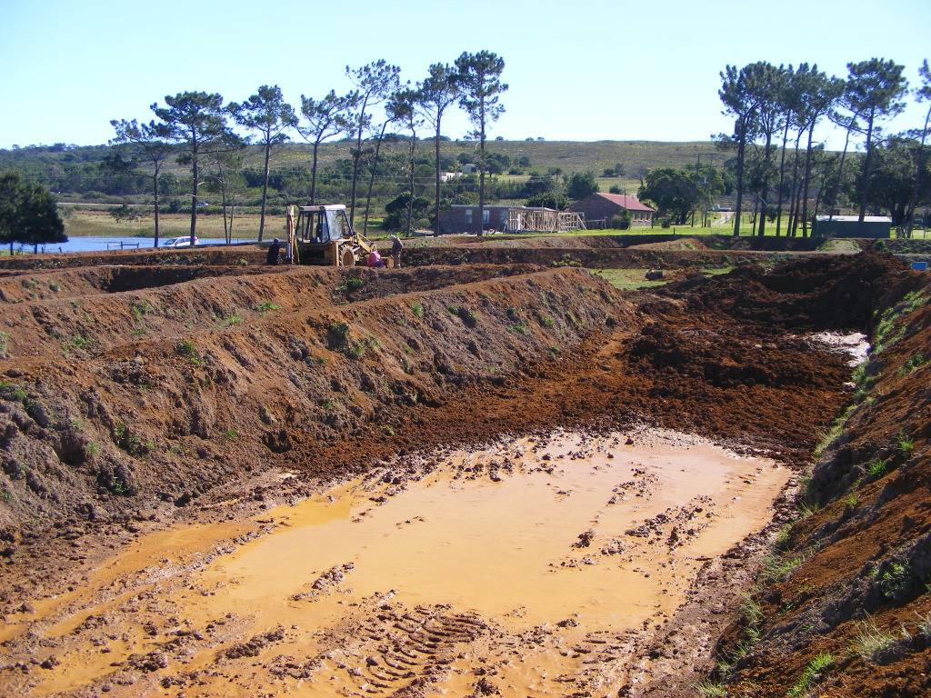 Mud Ponds.  - Page 3 DSCF9439