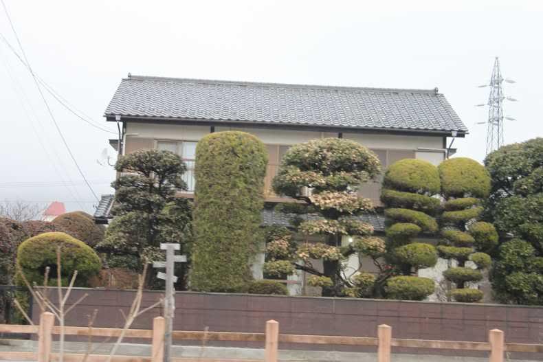 SAKURA 2012 March Japan Trip. - Page 2 Picture170-1