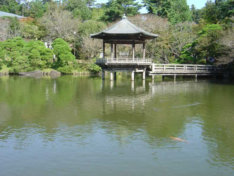 SAKURA 2012 March Japan Trip. - Page 2 Japanoct09073-1