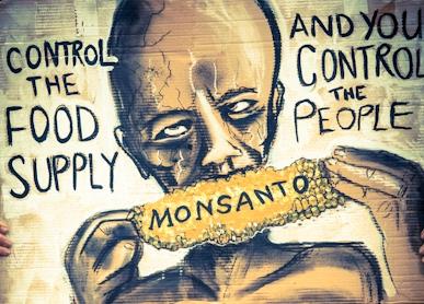 DEPOPULATION VIA LES OGM, LES PESTICIDES, LA DEFORESTATION ET LA POLLUTION DE NOTRE NOURRITURE ET DE NOS EAUX - Page 4 GMOAfrica_zps22ecf7a3