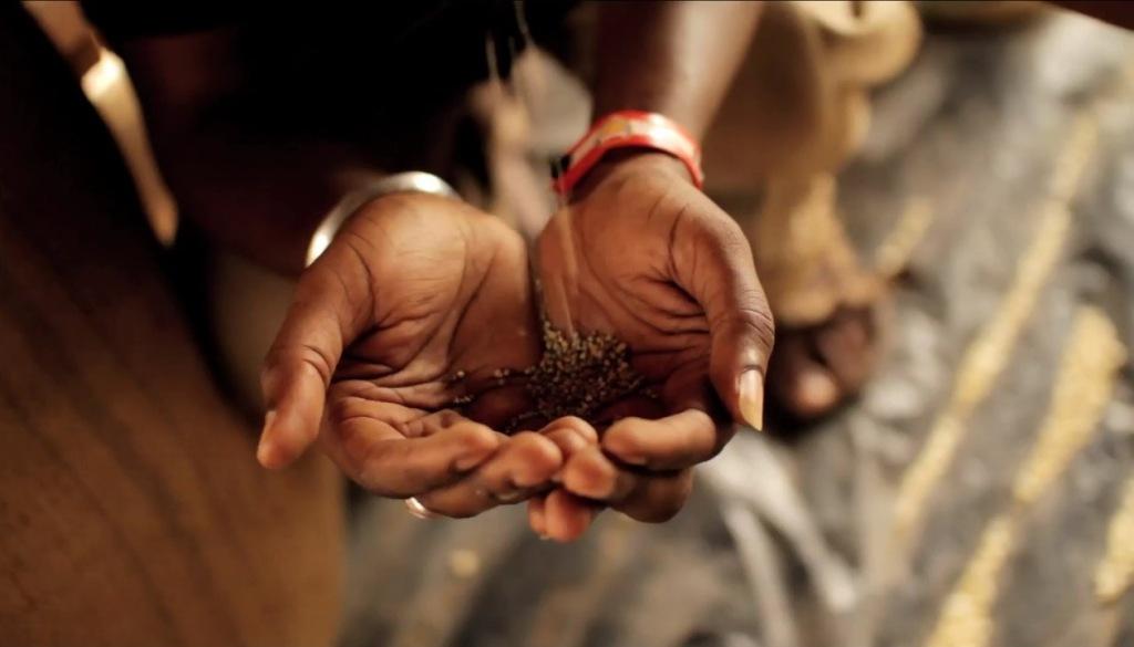 DEPOPULATION VIA LES OGM, LES PESTICIDES, LA DEFORESTATION ET LA POLLUTION DE NOTRE NOURRITURE ET DE NOS EAUX - Page 3 Hands