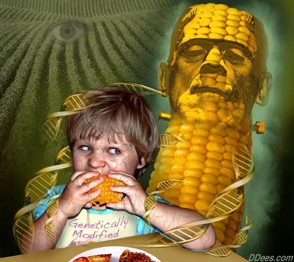 DEPOPULATION VIA LES OGM, LES PESTICIDES, LA DEFORESTATION ET LA POLLUTION DE NOTRE NOURRITURE ET DE NOS EAUX - Page 3 OGM_dees