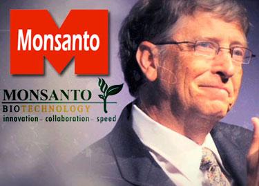 DEPOPULATION VIA LES OGM, LES PESTICIDES, LA DEFORESTATION ET LA POLLUTION DE NOTRE NOURRITURE ET DE NOS EAUX - Page 3 Bill-gates_monsanto