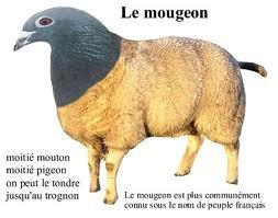 IMMORALITE ET SOCIETE DE MORT Mougeon_zpsa227a531