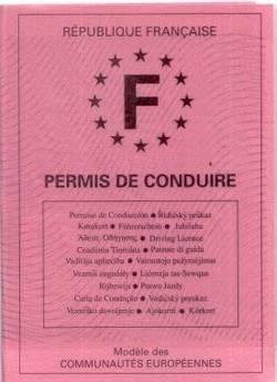 2012 : PISTAGE DES CITOYENS : SATELLITES, CAMERAS, SCANNERS, BASES DE DONNEES, IDENTITE & BIOMETRIE Permis-conduire-rose