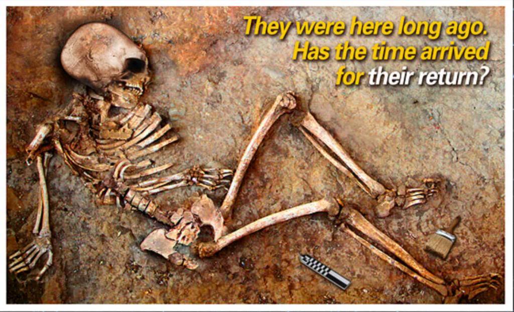 LE PAPE, LE VATICAN & LE NOUVEL ORDRE MONDIAL - Page 11 Skeleton_zpsd341e152