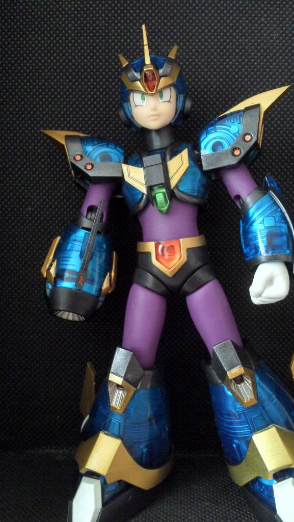 Megaman X  D-ARTS IMG_20140223_173459_574