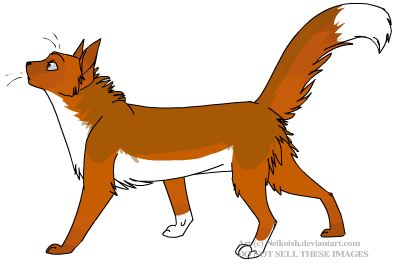 Background Info: the Founding Cats Foxstarprof_zps0f4287c6