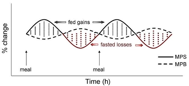 [Aporte]Post-entrenamiento sin carbohidratos. 1g