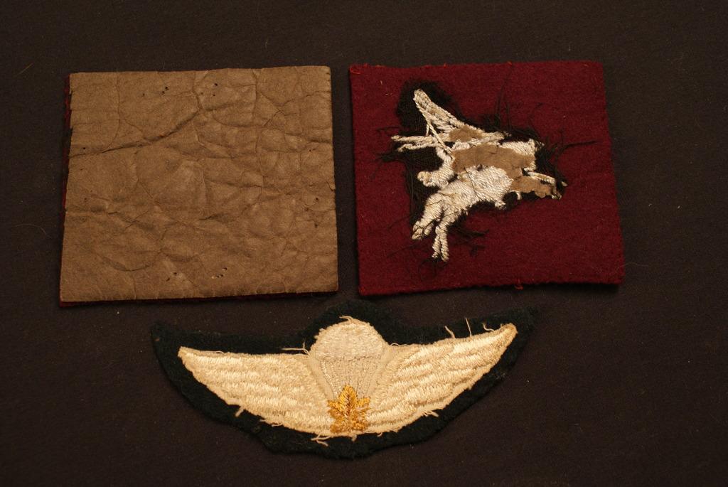 Regiment de La Chaudiere cap badges  DSC03035_zpszas8biy9