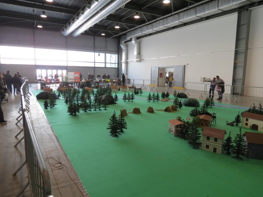 Model Expo Italy Verona 2-3 Marzo in foto - Pagina 2 IMG_0435