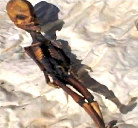 Bí ẩn 'người ngoài hành tinh tí hon' ở Chile 1-6