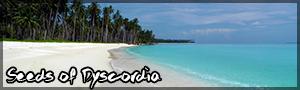 Costa Beluga