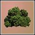 """Tienda """"Suplementos del Sultán"""" Plantas%20grado%201_zps3cymxjcq"""