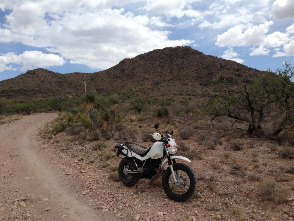 Where did you ride? IMG_0497_zps90f45fa9