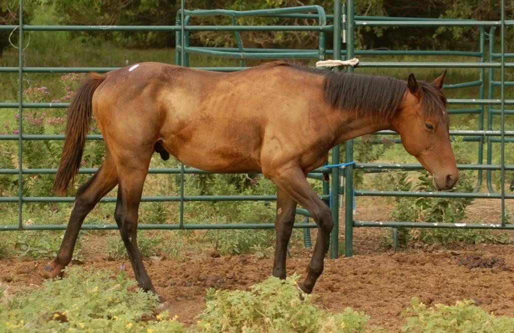 Howdy from Kansas Benny6_zpsbedb05f6