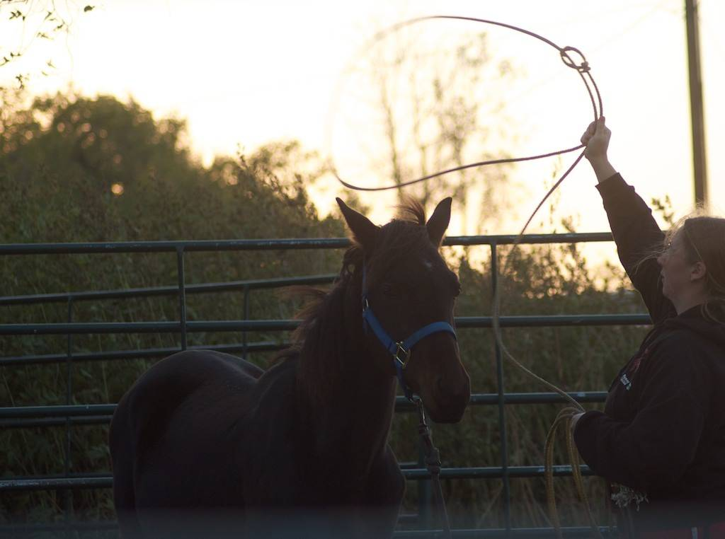 Howdy from Kansas Benny_zps030f688c
