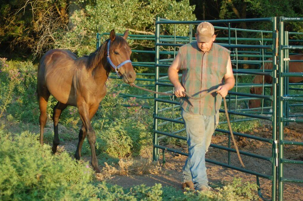 Howdy from Kansas Benny_zpsb9d61453