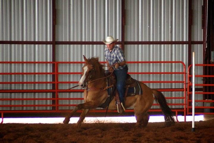 Howdy from Kansas 216896_10150149130988807_1708499_n_zpsd0d015df