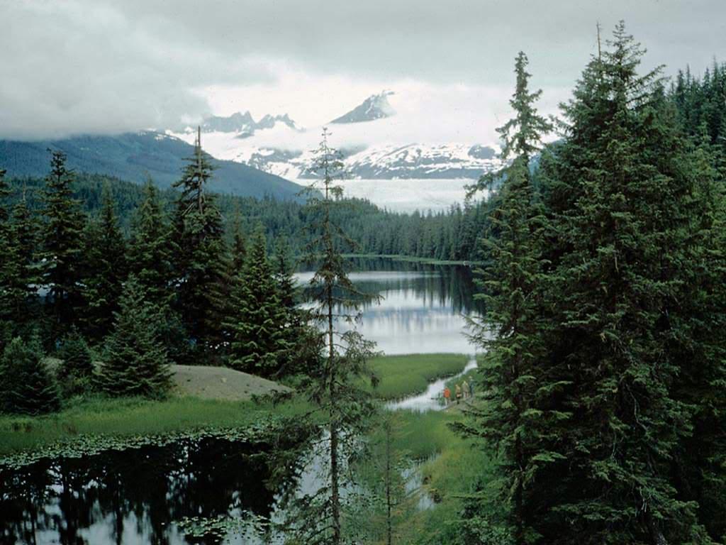 """""""Fs9"""" Glacier Bay - Sitka by New Tour Alaska parte 1 AlaskaVERDEENEVE"""