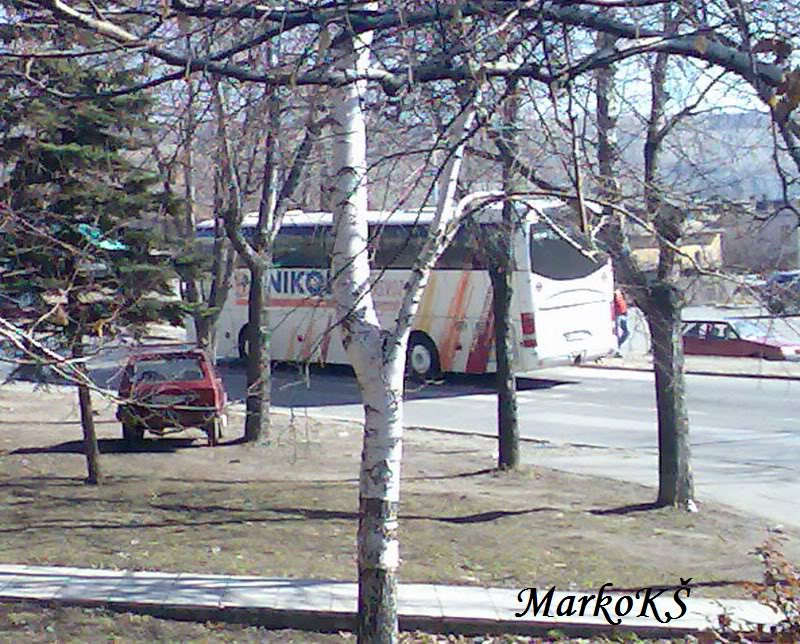 Ostali Prevoznici iz Srbije - Page 2 Nikolicprevoz-negotin