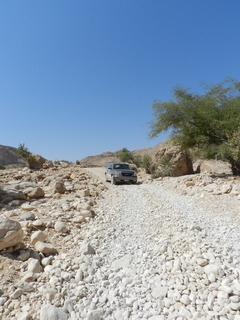 Oman 2016 - camping, off-roading and scorpions. DSCN5649_zpsk5ivefwj
