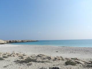Oman 2016 - camping, off-roading and scorpions. DSCN5695_zpszjk9xtf0