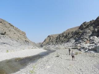 Oman 2016 - camping, off-roading and scorpions. DSCN5697_zpsmj6tqhra