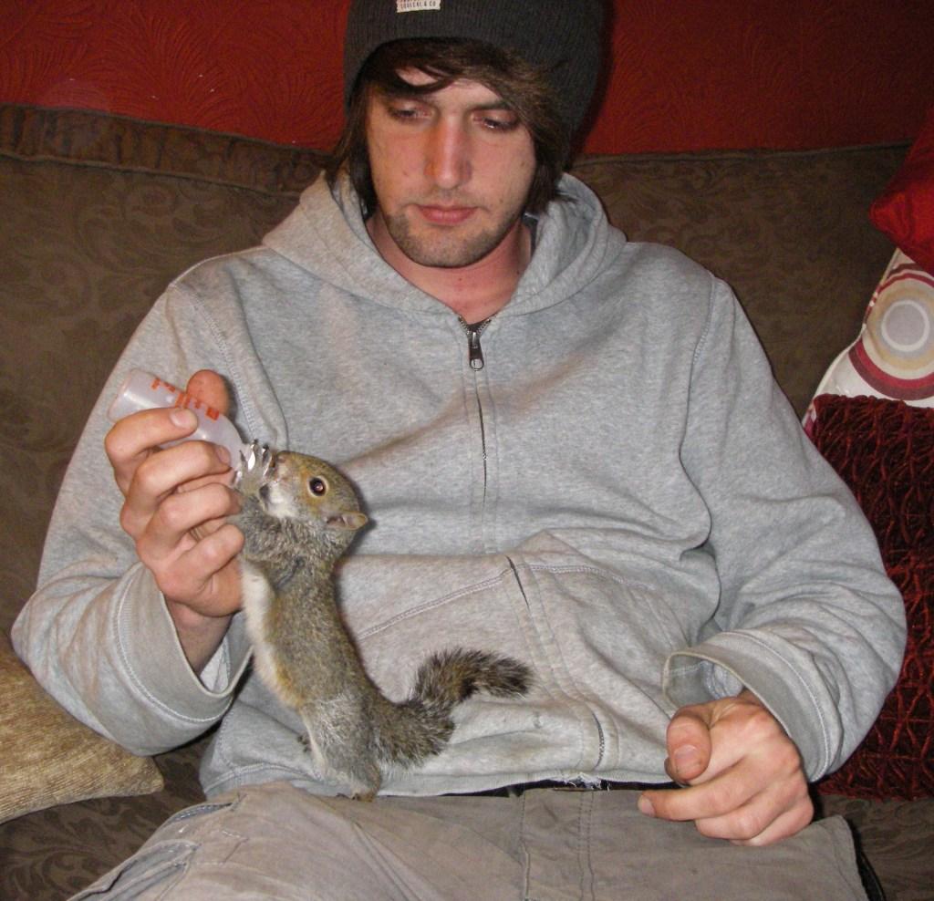 Some very cute vermin. Squirrel