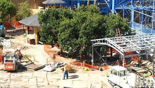 [Disney California Adventure] Placemaking: Pixar Pier, Buena Vista Street, Hollywood Land, Condor Flats - Page 4 P1010646
