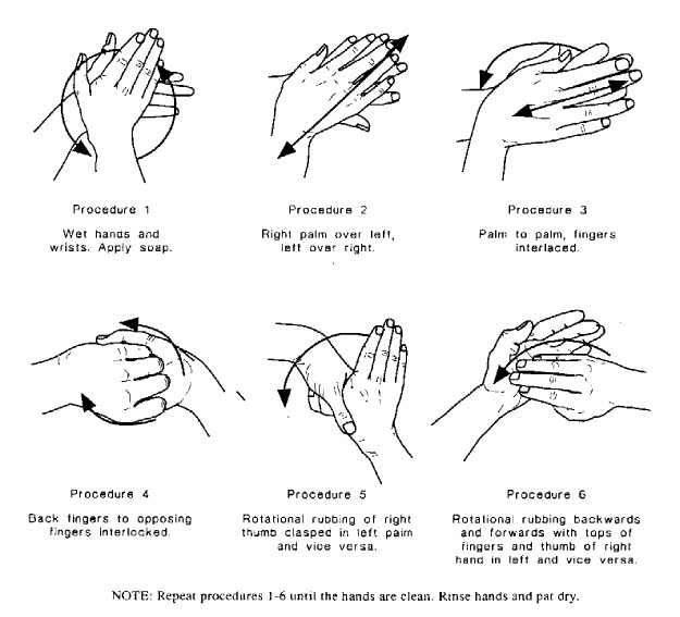 كيف تغسل يديك بالصور ? Rrrr