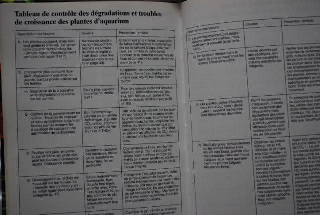 Guide des plantes aquatiques - Tetra DSC_0212640x480