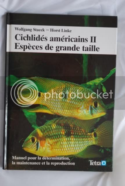 Cichlidés américains DSC_0203640x480