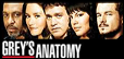 Foro gratis : ۰۪۪۫۫●۪۫۰ The Faculty ۰۪۪۫۫●۪۫۰  - Portal Anatomiadegrebanner2