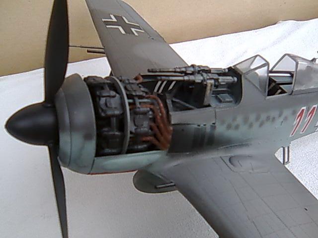Focke wulf 190 1/32 Hasegawa Imagem000_zps54b069d7
